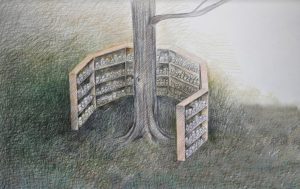 Library of Walks